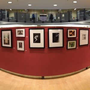 Gallery at Diekema-Hamann