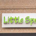 Little Sprout Boutique