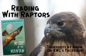 Reading With Raptors