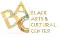 Diversity in the Arts in Kalamazoo