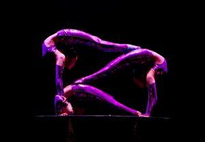 Golden Dragon Acrobats Present Cirque Ziva