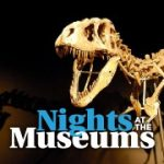 Science Festival: Night at the Museum