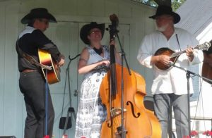 Friday Night Highlights Series: Double-Strung at the Kalamazoo Valley Museum